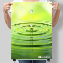 Poster / Plakat